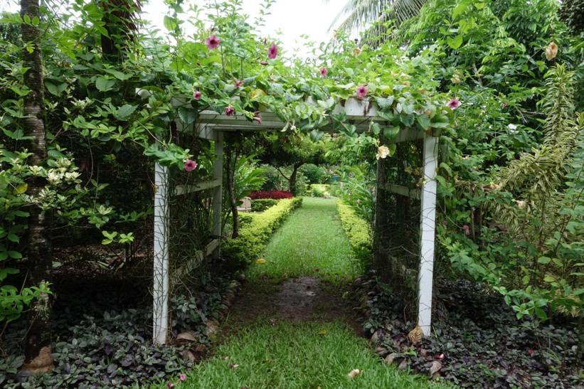 Rarotonga Botanical Gardens