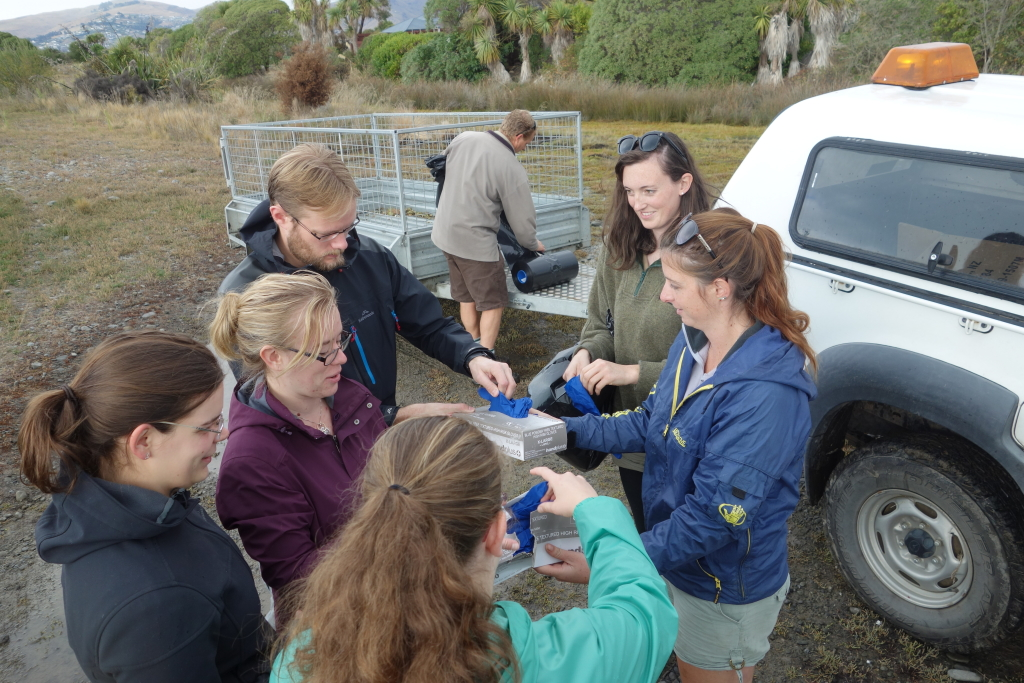 Bexley Wetland Clean with Canterbury Uni