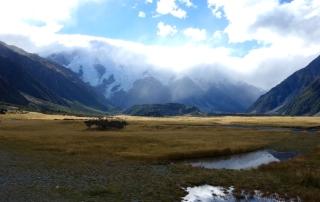 Mt Cook plains